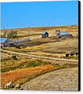 Home On The Range Canvas Print by Kelly Reber