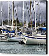 In The Harbor Canvas Print by Cheryl Young