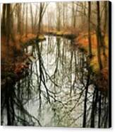 Just One Wish Canvas Print by Diana Angstadt