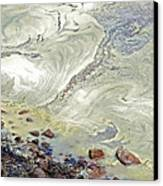 Natures Art Canvas Print by Susan Leggett