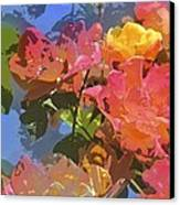 Rose 208 Canvas Print by Pamela Cooper