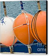 Seaside Colors Canvas Print by Frank Tschakert