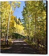 Telluride Colorado Fall Canvas Print by Michael J Bauer
