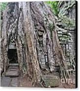 Tree Roots On Ruins At Angkor Wat Canvas Print by Sami Sarkis