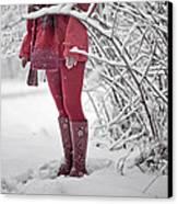 Winter... Canvas Print by Renata Vogl