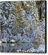 Winter Scene Canvas Print by Pat Now