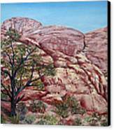 Among The Red Rocks Canvas Print by Roseann Gilmore