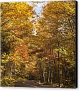 Autumn Drive Canvas Print by Andrew Soundarajan