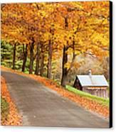 Autumn Road Canvas Print by Brian Jannsen