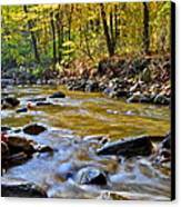 Autumn Stream Canvas Print by Frozen in Time Fine Art Photography