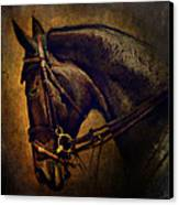 Cover Girl Canvas Print by Lyndsey Warren