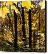 Fall Abstract Canvas Print by Steven Ralser