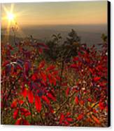 Fire On The Mountain Canvas Print by Debra and Dave Vanderlaan