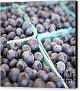 Fresh Blueberries Canvas Print by Edward Fielding