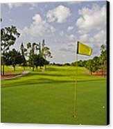 Golf Course Canvas Print by M Cohen