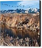 Great Salt Lake Utah Canvas Print by Utah Images