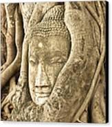 Head Of Buddha Ayutthaya Thailand Canvas Print by Colin and Linda McKie