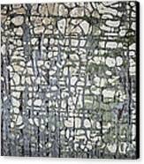 Old Painted Wood Abstract No.6 Canvas Print by Elena Elisseeva
