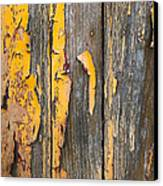 Old Wooden Background Canvas Print by Carlos Caetano