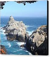 Point Lobos Number Four Canvas Print by Catherine Lau