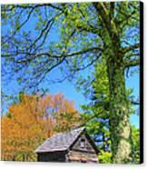 Puckett's Cabin Canvas Print by Paul Johnson