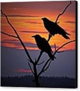 2 Ravens Canvas Print by Ron Day
