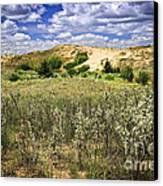 Sand Dunes In Manitoba Canvas Print by Elena Elisseeva