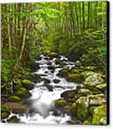 Smoky Mountain Stream Canvas Print by Frozen in Time Fine Art Photography