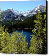 Spring At Bear Lake Canvas Print by Tranquil Light  Photography