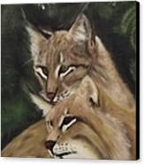 We See You Canvas Print by Frank Loria