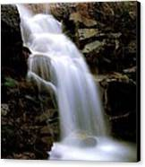 Wildcat Falls Canvas Print by Bill Gallagher