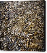 Rocks In Water Canvas Print by Elena Elisseeva