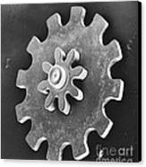 Watch Gear, Sem Canvas Print by David M. Phillips