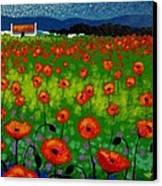 Poppy Field Canvas Print by John  Nolan