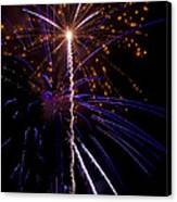 4th Of July Fireworks Canvas Print by Ray Devlin