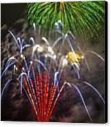 4th Of July Through The Lens Baby Canvas Print by Scott Campbell