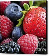 Assorted Fresh Berries Canvas Print by Elena Elisseeva