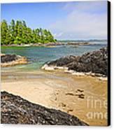 Coast Of Pacific Ocean On Vancouver Island Canvas Print by Elena Elisseeva
