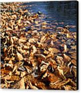 Ussurian Taiga Autumn Canvas Print by Anonymous