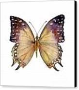 63 Great Nawab Butterfly Canvas Print by Amy Kirkpatrick