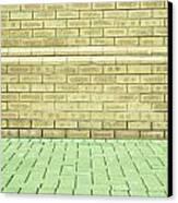 Brick Wall Canvas Print by Tom Gowanlock