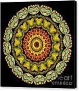 Kaleidoscope Ernst Haeckl Sea Life Series Canvas Print by Amy Cicconi