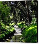 A Babbling Brook Canvas Print by Al Bourassa