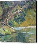 A Coramandel Stream Canvas Print by Terry Perham