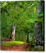 A Day In The Forest Canvas Print by Lutz Baar