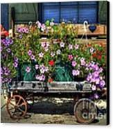 A Flower Wagon Canvas Print by Mel Steinhauer