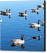 A Lot Of Geese Canvas Print by Eric w Martin