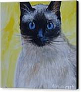 A Loving Siamese Canvas Print by Leslie Allen
