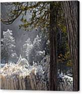 A North Woods Fairy Tale Canvas Print by Mary Amerman