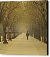 A Royal Stroll Canvas Print by Aaron S Bedell